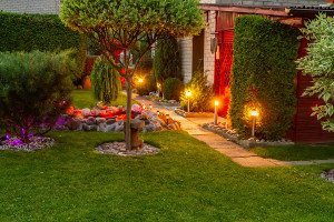Cary landscape lighting