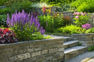 Year Round Landscaping Tips