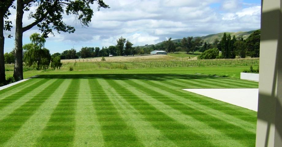 raleigh lawn care raleigh landscaping durham lawn care